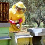 Agriturismo Arcobaleno Amaroni (10)