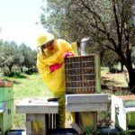 Agriturismo Arcobaleno Amaroni (12)