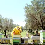 Agriturismo Arcobaleno Amaroni (14)