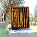 Agriturismo Arcobaleno Amaroni (7)