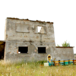 Azienda Marra (8)